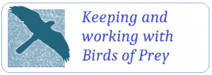 Keeping and working with birds of prey