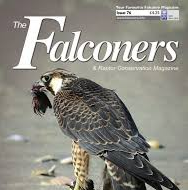 Read Raptor Awards published article here: