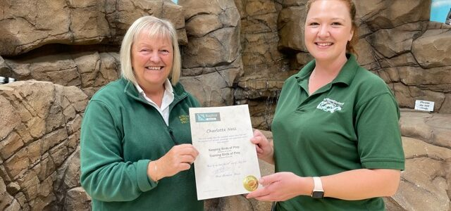 Bird of Prey course success for Charlotte